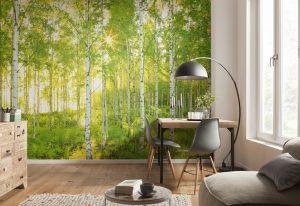 Ambiente Decorado Painel Fotográfico de Floresta Verdejante
