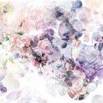 Painel Fotográfico com Flores em Simbiose