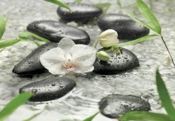 Painel Fotográfico Orquídeas Brancas Ref. 8-319