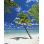 painel fotográfico de praia com coqueiros