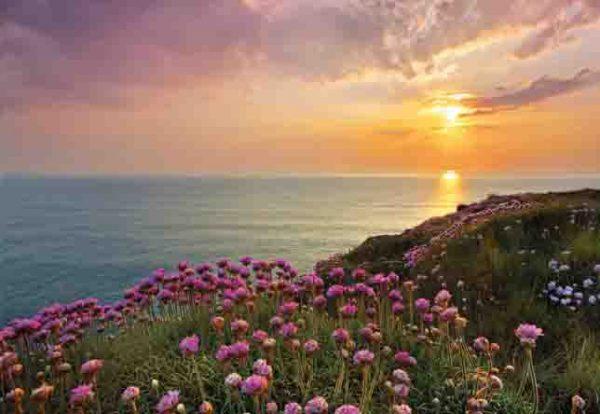 Painel Fotográfico Por do Sol com Rosas Ref. 8-901
