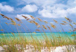 Painel Fotográfico Brisa da Praia Ref. 8-515