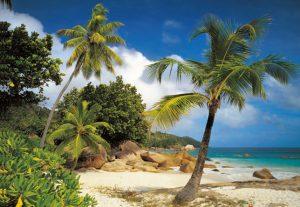 Painel Fotográfico Praia de Seychelles Ref. 8-885