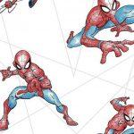 Papel de Parede Spider Man