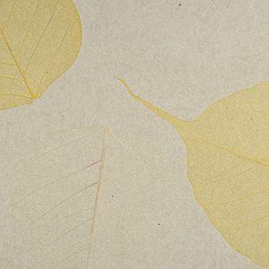 Palha Natural Folha Seca com fundo cinza - V6878