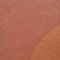Palha Natural Folha Seca e fundo vermelho - Y200