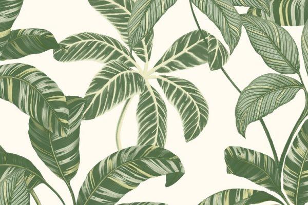 Papel de Parede com folhagens verde - 4100