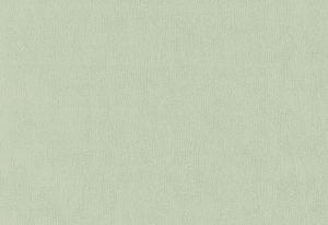 Papel de Parede Verde CLaro com Textura - 02256-70