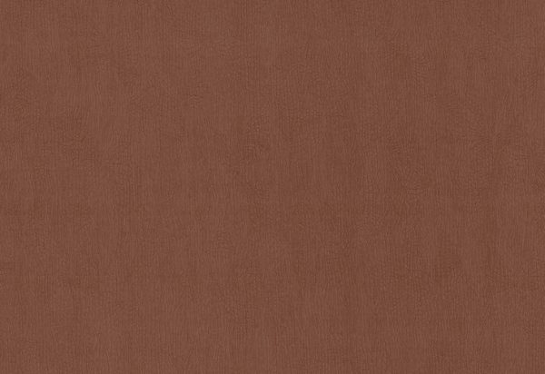 Papel de Parede Bronze - 02256-80