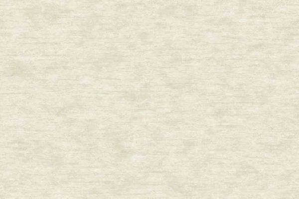 Papel de Parede Liso Bege - AMB16522